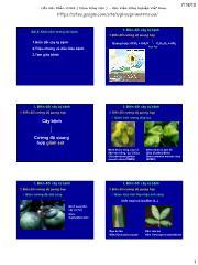 Bệnh cây đại cương - Bài 2: Khái niệm tương tác bệnh