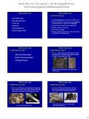 Bệnh cây đại cương - Nấm và bệnh nấm