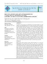 Khả năng sử dụng rong bún (enteromorpha sp.) và rong mền (cladophoraceae) khô làm thức ăn cho cá tai tượng (osphronemus goramy)