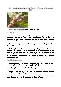 Một số sâu bệnh hại trên cây sắn và biện pháp phòng trừ