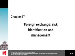 Tài chính kế toán - Chapter 17: Foreign exchange: risk identification and management