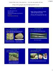 Tài liệu về bệnh vi khuẩn