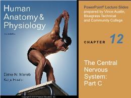 Y khoa, y dược - The central nervous system: Part C