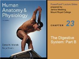 Y khoa, y dược - The digestive system: PartB