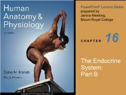 Y khoa, y dược - The endocrine system: Part B