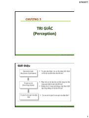 Tâm lý học nhận thức - Chương 3: Tri giác - Nhan Thị Lạc An