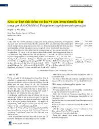 Khảo sát hoạt tính chống oxy hoá và hàm lượng phenolic tổng trong cao chiết Cốt khí củ Polygonum cuspidatum polygonaceae - Huỳnh Thị Như Thuý